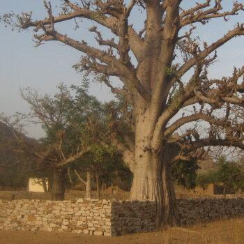 Mali (-2010)